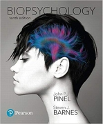 test bank for Biopsychology 10th Edition by John P. J. Pinel
