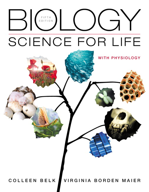 Test bank for Biology: Science for Life with Physiology 5th Edition by Colleen Belk的图片 1